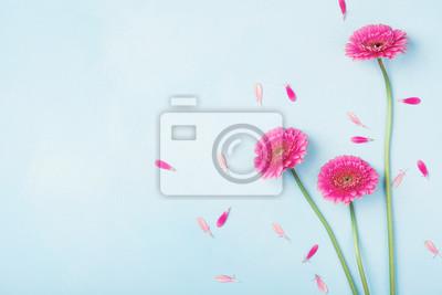 Fototapete Schöne Frühlingsrosablumen auf blauer Pastelltischplatteansicht. Blumenrand. Flache Laienart.