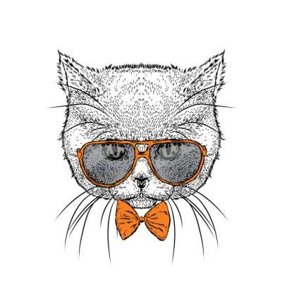 ac2cafc4b7b8b Fototapete Schöne Katze in Gläsern und Krawatte. Vektor-Illustration für  eine Karte oder Poster