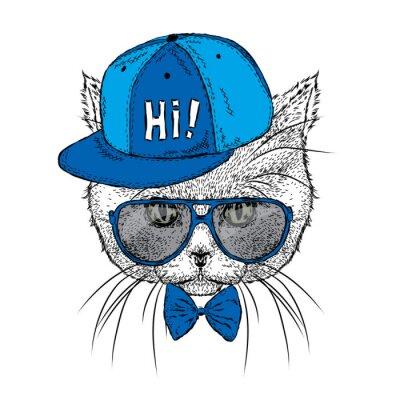 4798dff663946 Fototapete Schöne Katze mit Brille und Kappe. Vektor-Illustration für eine  Karte oder Poster