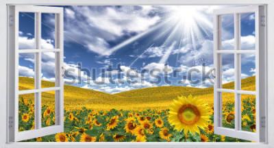 Fototapete Schöne Sommerlandschaft, Fensteransicht