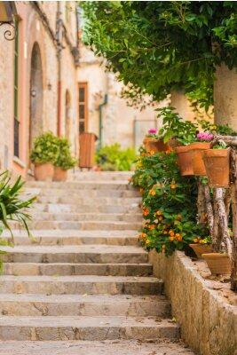 Fototapete Schöne Stein Treppe mit Topfpflanzen Dekoration