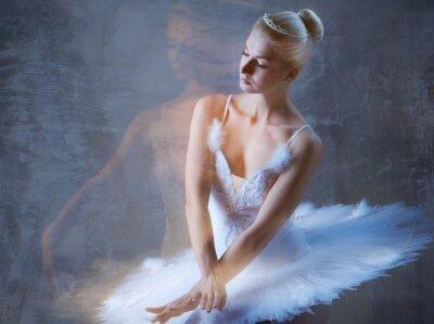 Fototapete Schöner Balletttänzer