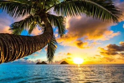 Fototapete Schöner hawaiischer Sonnenaufgang am Lanikai Strand
