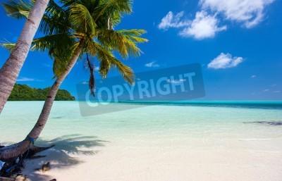 Fototapete Schöner tropischer Strand mit Palmen, weißem Sand, türkisem Ozeanwasser und blauer Himmel bei Palau