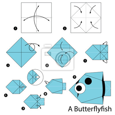 Schritt Für Schritt Anleitung Wie Man Origami Machen Ein