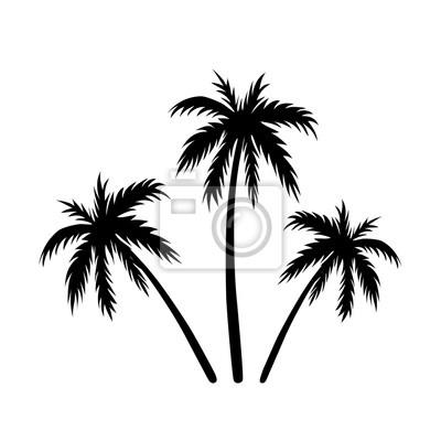 Schwarz kokosnussbaum silhouette, isoliert auf weißem hintergrund ...