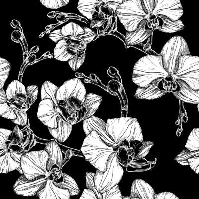 Fototapete Schwarz und weiß nahtlose Muster mit Handzeichnung Orchidee Blume