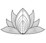 Vektor Illustration Einer Lotusblute Mandala Fiore Di Loto Mandala