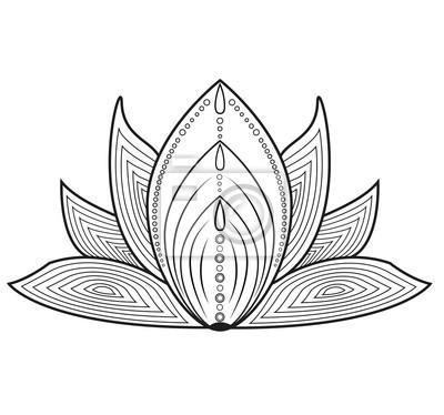 Schwarz Und Weiss Vektor Verziert Lotos Blume Zum Farben Fiore