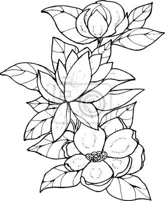 Schwarz Weiss Muster Von Blumen Kleiner Blumenstrauss Fototapete
