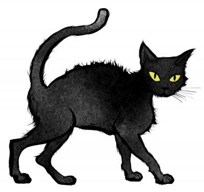 Fototapete Schwarze Katze zu Fuß und Blick in die Kamera