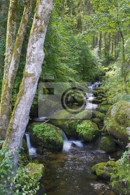triberger wasserfälle schwarzwald baden-württemberg