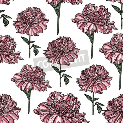 Fototapete Seamless floral pattern with peony on white background.  Vector illustration. Typography design elements for prints, cards, posters, products packaging, branding.