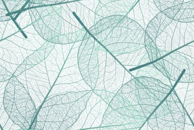 Fototapete Seamless pattern with leaves veins. Vector illustration.