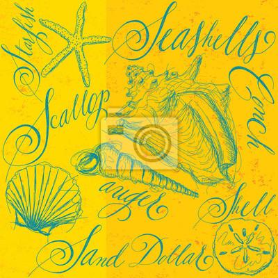 Seashells mit Kalligraphie