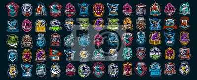 Fototapete Set of animal emblems. Bear, dinosaur, eagle, leopard, wolf, horse, fox, lion, grizzly, raptor, hawk, jaguar, cat, lynx, leo, stallion, birds. Sports mascots, colorful collection, vector illustration