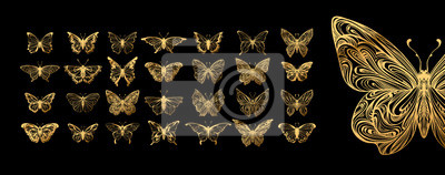 Fototapete Set of butterflies, ink silhouettes. Glowworms, fireflies and butterflies icons isolated on white background. Hand drawn elements, Vector illustration.