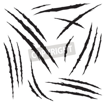 Fototapete Set of claw scratches, isolated on white background, vector illustration