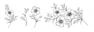 Fototapete Set of differents flower linen on white background.