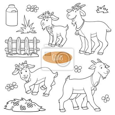 Set von niedlichen nutztiere und objekte, vektor-familie ziegen ...