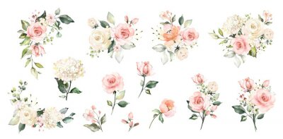 Fototapete Set watercolor arrangements with roses. collection garden pink flowers, leaves, branches, Botanic  illustration isolated on white background.