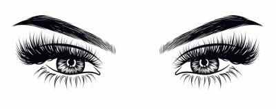 Fototapete Sexy Make-up-Look der handgezeichneten Frau mit perfekt geformten Augenbrauen und extra vollen Wimpern. Idee für Geschäftsbesuchskarte, Typografievektor. Perfekter Salon-Look