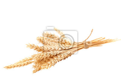 Fototapete Sheaf of wheat ears isolated on a white background
