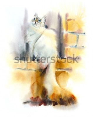 Fototapete Siberian cat sits on the window. Watercolor hand drawn illustration