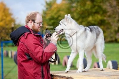 Siberian Husky mit einem Mann