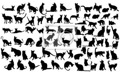 Fototapete  silhouette of a cat, set