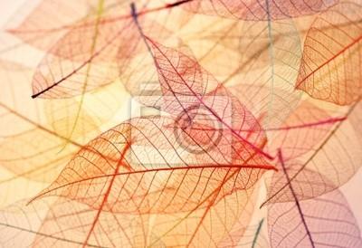 Skeleton Blätter Hintergrund