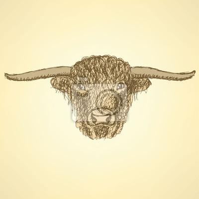 Sketch bull head in vintage style