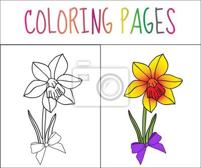 Tolle Färbung Ideen Für Kinder Bilder - Framing Malvorlagen ...