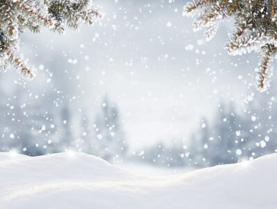 Fototapete Snowfall in winter forest.Beautiful landscape with snow covered fir trees and snowdrifts.Merry Christmas and happy New Year greeting background with copy-space.Winter fairytale.