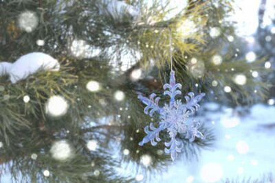 Fototapete Snowflake Christmas toy, Spruce, fir green branch in winter park covered with snow. New Year holiday atmosphere, spirit. Glare and bokeh, evening twilight