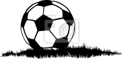 Soccer Ball or Football In Grass