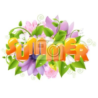 Sommer-Abbildung