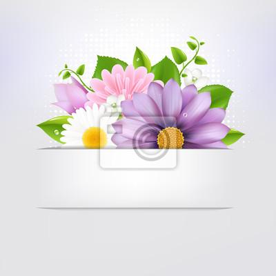 Sommer-Blumen mit Blatt