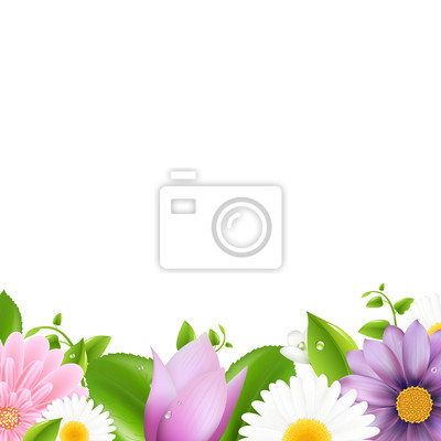 Sommer Blumen mit Blatt-Grenze