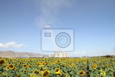 Sonnenblumen-Feld-und Kraftwerk