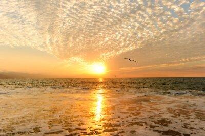 Fototapete Sonnenuntergang Ozean-Vögel