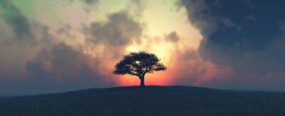 Fototapete Sonnenuntergang und Baum