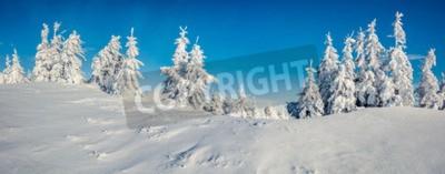 Fototapete Sonniges Morgenpanorama im Bergwald.  Helle Winterlandschaft im verschneiten Wald, Frohes Neues Jahr-Feierkonzept.  Nachbearbeitetes Foto im künstlerischen Stil.