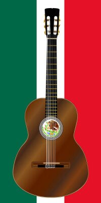 Spanish Acoustic  Guitar On Mexico Flag Colors