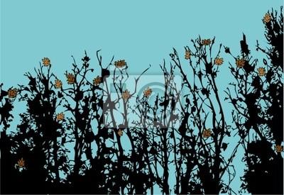 Spätherbst Bäumen Silhouetten