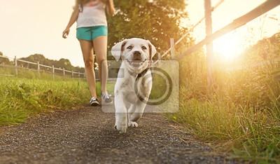 Spaziergang einer jungen Frau