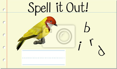 Spell English word bird