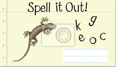 Spell English word gecko
