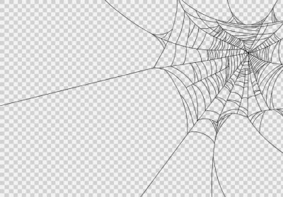 Fototapete Spiderwebs isolate on png or transparent  background, happy halloween banner, template for poster, brochure, advertising, promotion,sale marketing vector illustration
