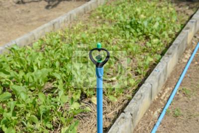 Delicieux Fototapete Sprinkler, Garten Bewässerung System Bewässerung Rasen